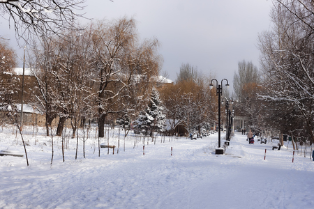 In the city park in the winter