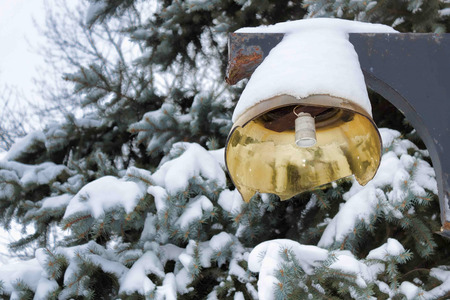 Broken light without lamp on the background of spruce, covered with snow