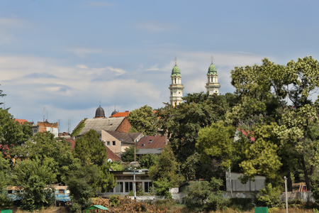 Trees and houses in the old part of Uzhhorod. In the distance one can see partially the Cathedral