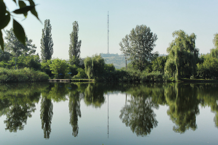 Reflection of trees in the lake. In the background the TV tower