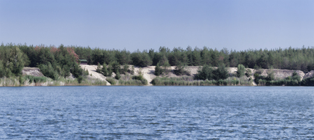 Sandy shore of a blue lake with trees growing on the shore. Panoramic view