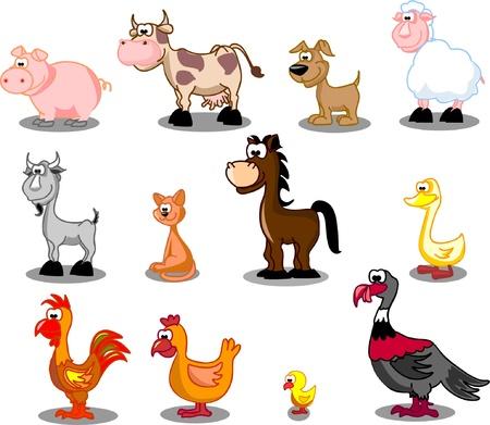 cabra: Conjunto de animales de granja