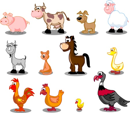 farm animal cartoon: Set of farm pets Illustration
