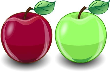 nice food: Красный и зеленое яблоко
