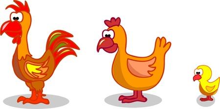 Cartoon hen rooster chicken Stock Vector - 11235444