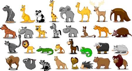 faultier: Extra gro�e Gruppe von Tieren wie L�wen, K�ngurus, Giraffen, Elefanten, Kamele, Antilopen, Flusspferde, Tiger, Zebras, Nash�rner Illustration
