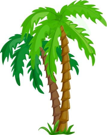 espejismo: �rboles de palma de vectores tropicales aislado en blanco Vectores