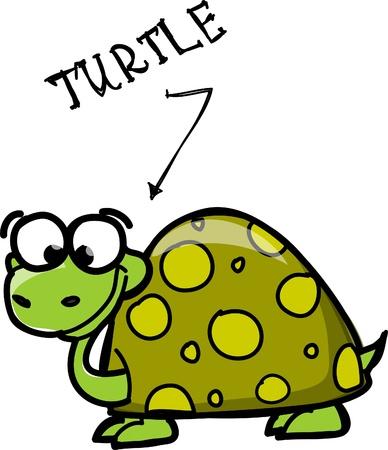 turtle isolated: cartoon turtle  Illustration