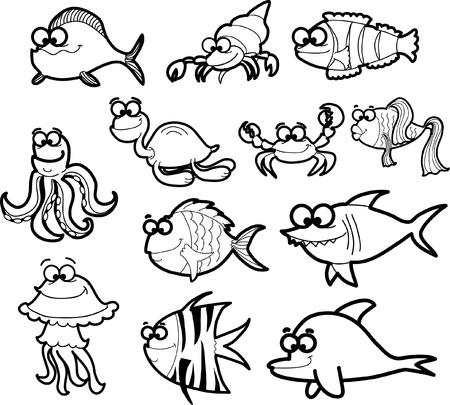 hippo campus: Marine fishes, illustration