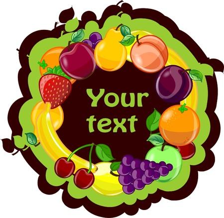 포도 수확: 과일 배경, 벡터