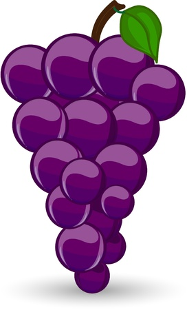 grape: Cartoon grape Illustration