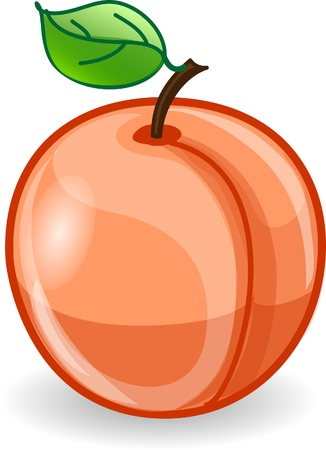 fruit illustration: Cartoon peach  Illustration