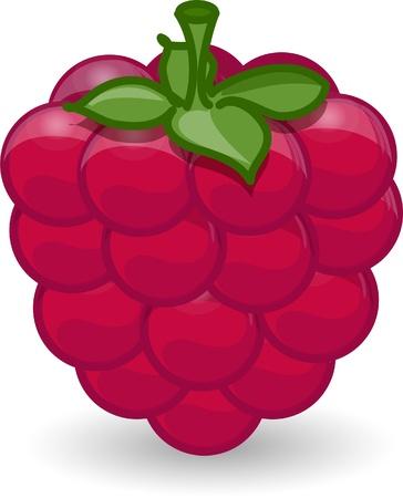 raspberries: Cartoon raspberry