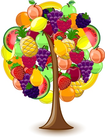 Tree with a variety of fruits Vector