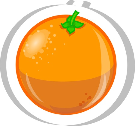Cartoon orange  Vector