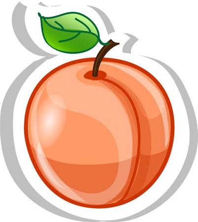Cartoon abrikoos