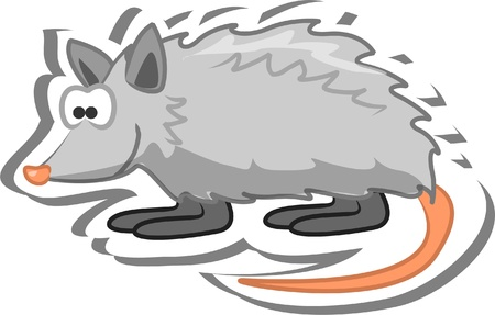 Cartoon opossum Stock Vector - 13557294