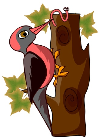 woodpecker: Cartoon woodpecker