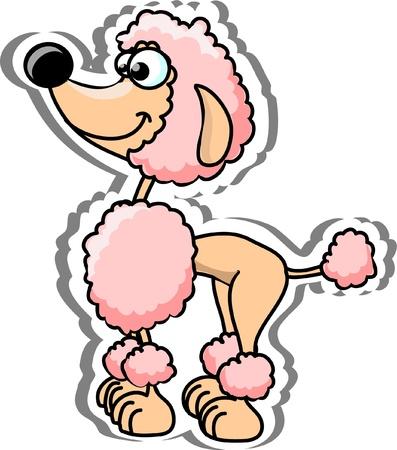 Cartoon poodle  Illustration