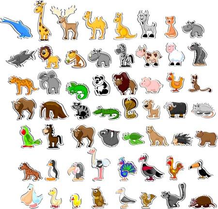 anteater: Large set of animals  Illustration