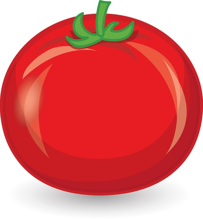 Cartoon tomato  Vector