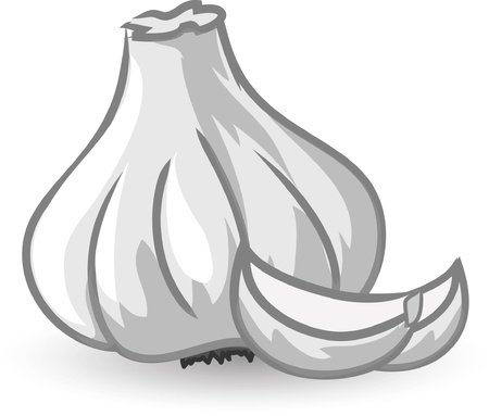 Cartoon garlic  向量圖像