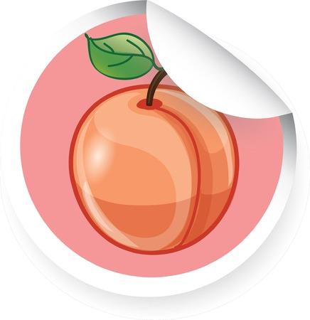 Sticker with cartoon peach  Vector
