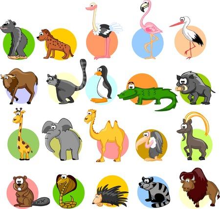 flamingos: Set of cartoon animals  Illustration