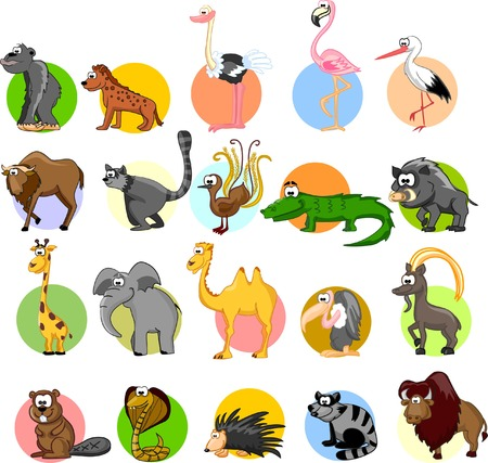 Set of different animals and birds  Vector