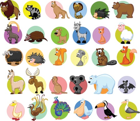 llama: Set of different animals and birds  Illustration