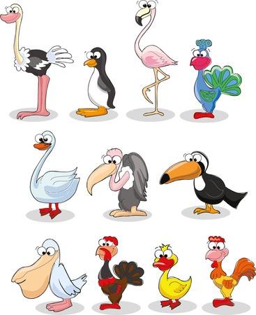 Set of cute cartoon birds Ilustrace