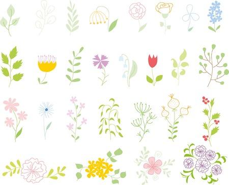 Set of floral design elements, hand drawing vector illustration