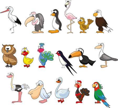 turkey cock: Set of cute cartoon birds Illustration