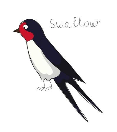 Cartoon swallow