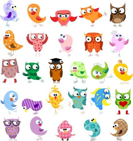 birds cartoon: Set of cartoon birds