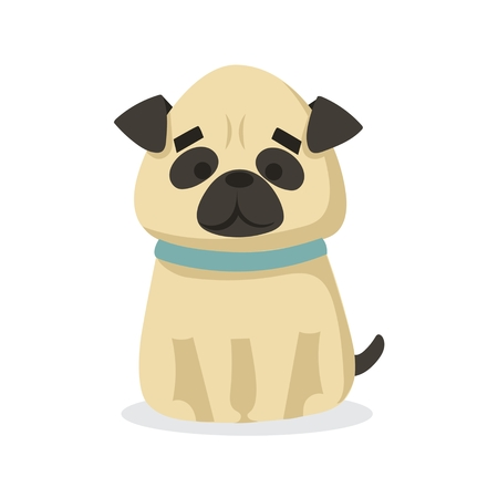Vector illustration of cute and funny cartoon pug puppy in a flat style