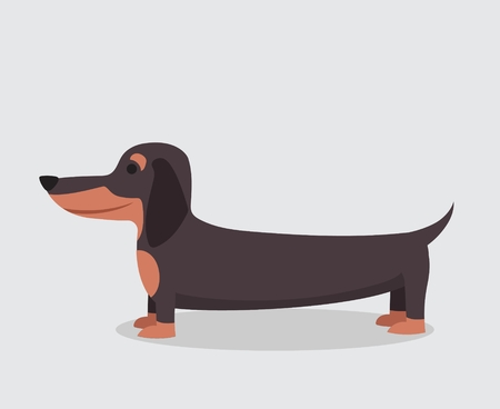 Vector illustration of cute and funny cartoon dachshund puppy in a flat style Stock Illustratie