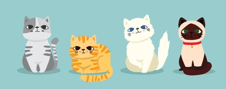 Cute vector illustration of cat breeds, pet animal set
