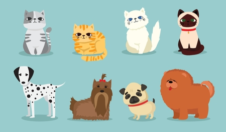 Vector illustration of cute and funny pets Çizim