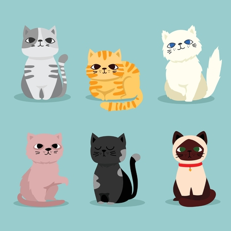 Cartoon vector illustration of a pet breed Ilustrace