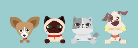 Vector illustration of cute and funny cartoon pet characters. Illustration