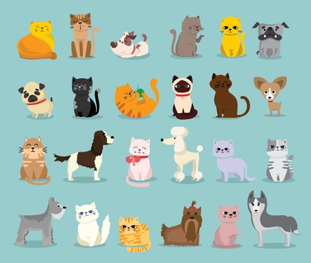 Vector illustration set of pet characters