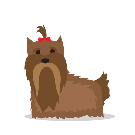 Cartoon Yorkshire Terrier dog in a flat style