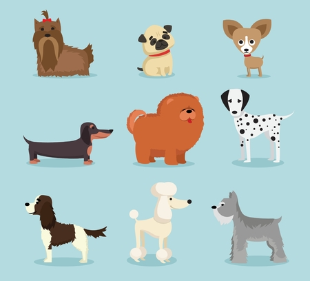 Vector illustration of cute and funny dog breeds