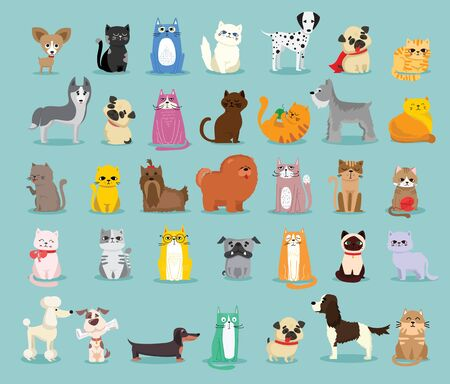 Different breed of dogs and cats in the flat style.