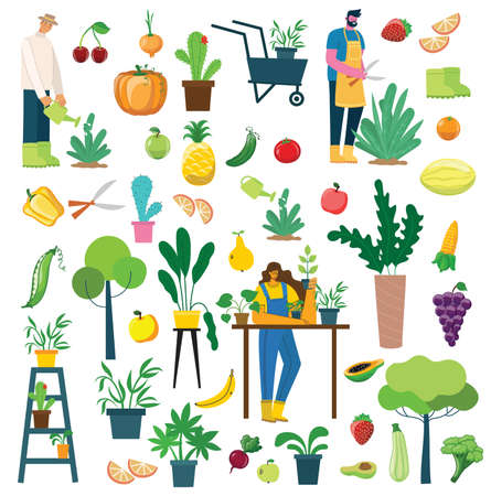 Vector set of village people with organic eco food, flowers and plants in the flat design