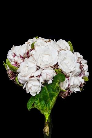 bunchy: Rose Clerodendrum aislado en el fondo negro