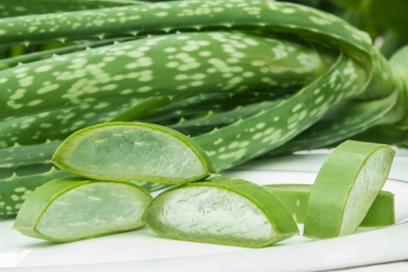 Aloe Vera on white plate