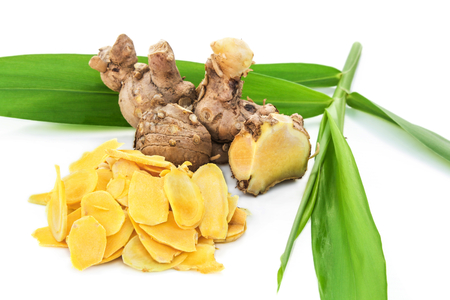 Cassumunar ginger, a basic ingredient for Thai massage oil