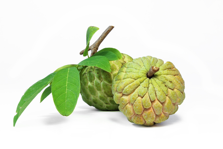 Custard apple fruit with leaves on white background